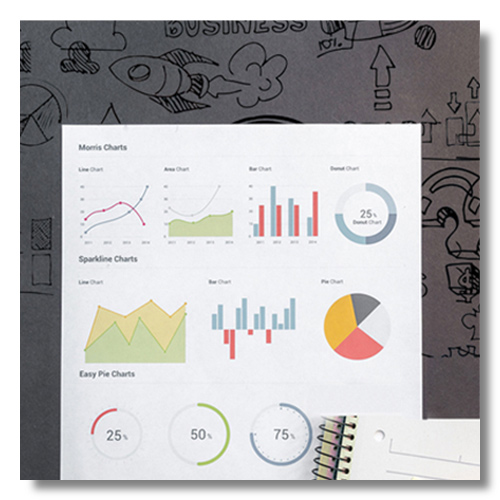 Business Analytics Services